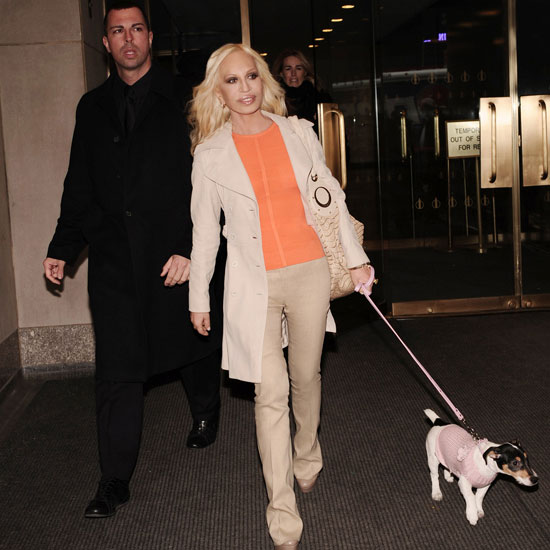 Donatella Versace's Pup Is Pretty in Pink, Is Yours?