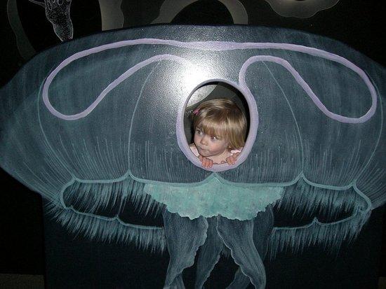 Jellyfish Izzy.