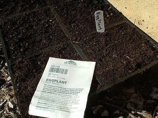 How-To: Planting Seeds