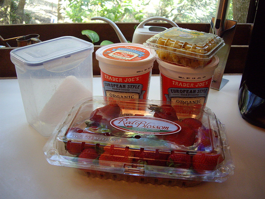 Strawberry & Raspberry Frozen Yogurt popsicle