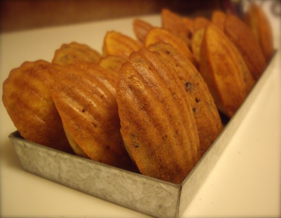 Savory Madelines