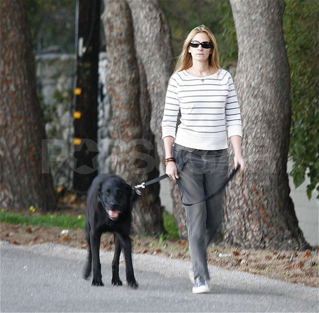 Julia Walks the Dog