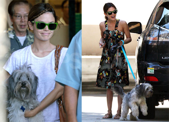 Photos of Rachel Bilson With Her Dog Thurman Murman at Home Depot