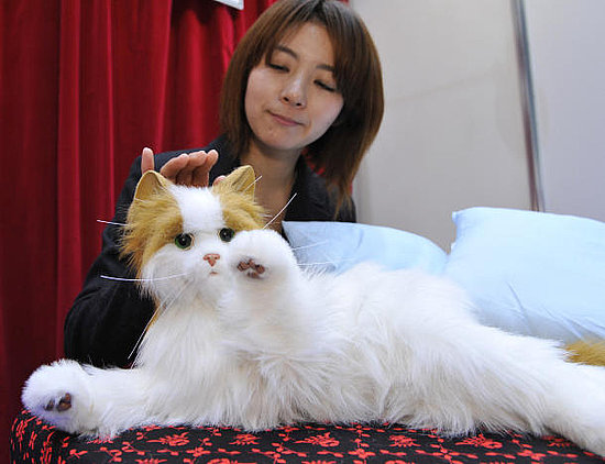Sega Robot Kitty: Almost Like a Real One, Just Not Alive