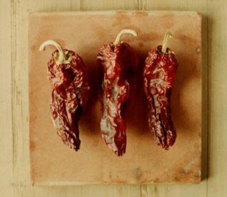 Pork Tenderloin with Ancho Chile Sauce
