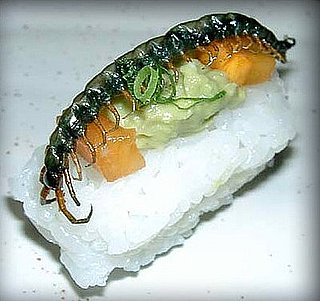 Would You Eat This Insect Sushi?