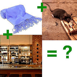 Mouse Trap Found on Diner's Shawl at SF's Terzo