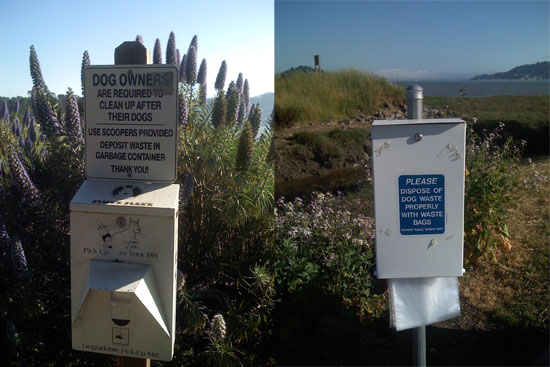 To the Rescue: Composting Dog Poop?