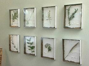 DIY: Botanical Prints