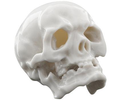 Love It or Hate It? Porcelain Skull