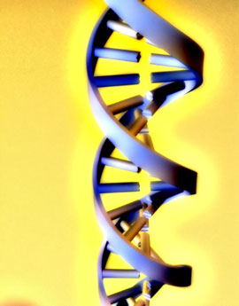 DNA Testing For Athletic Ability