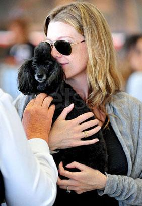 Ellen Pompeo Takes Off With Gigi But Where's Valentino?