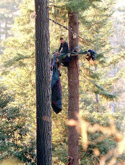Environmental Extremist Groups: 8 Acts of Ecoterrorism