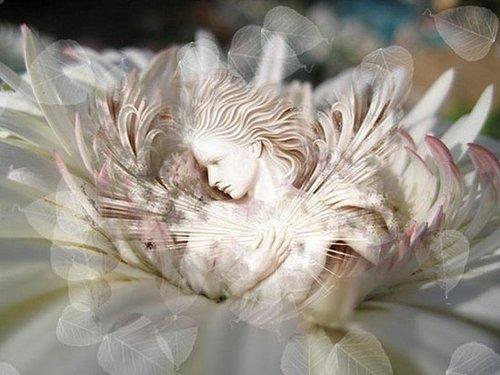 RAY OF LIGHT - SPIRITUAL AWAKENINGS