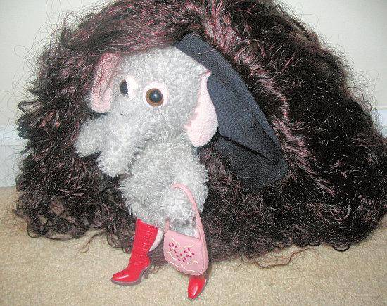 Meet Elephante