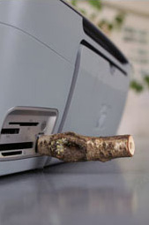 Wood Memory Sticks: Nature Meets Office
