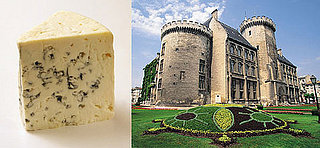 Moldy Cheese or French Chateau?