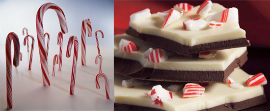 Would You Rather Eat a Candy Cane or Peppermint Bark?