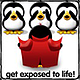 Penguin091507