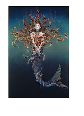 Rate My Postcard.. Mermaid Metamorphosis
