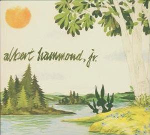 "Song of the Day: Albert Hammond Jr., ""In Transit"""