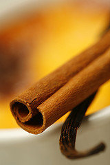 Cinnamon stick and Vanilla pod [details]