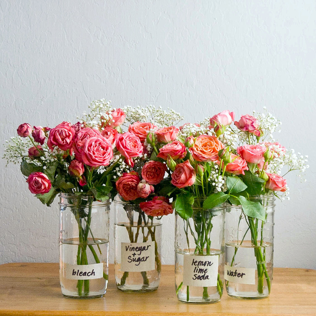 How to make flowers last longer popsugar smart living the flowers that were simply soaking in water the blooms were still mostly fresh and the water wonderfully clear in the vase izmirmasajfo