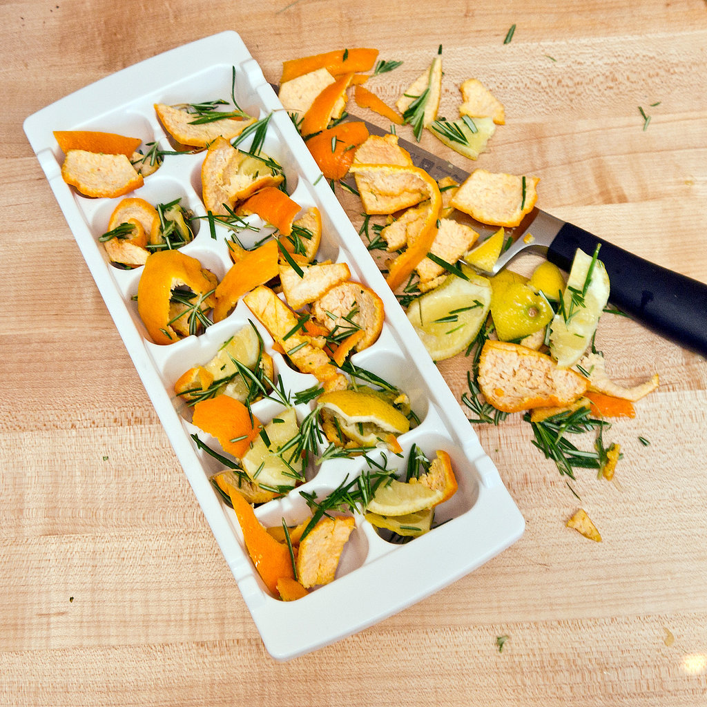 Frozen Citrus Rosemary Garbage Disposal Cleaners