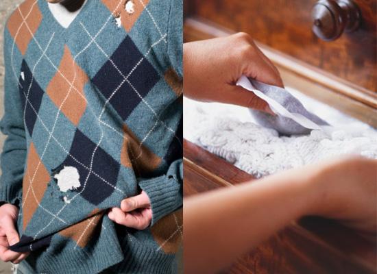 Moth Eaten Protecting Clothes Popsugar Fashion Uk