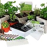 Culinary Indoor Herb Garden Starter Kit