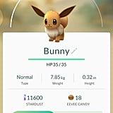 "Eevee aka ""Bunny"""
