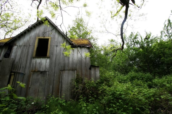 Midday Muse: Fallow Farmhouse