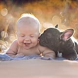 Baby and French Bulldog Pictures