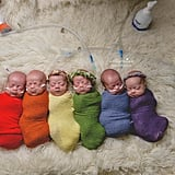 Rainbow Sextuplets Photo Shows Babies' Birth Order