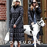 Cameron Diaz hit her NYC set with Leslie Mann and a large dog.