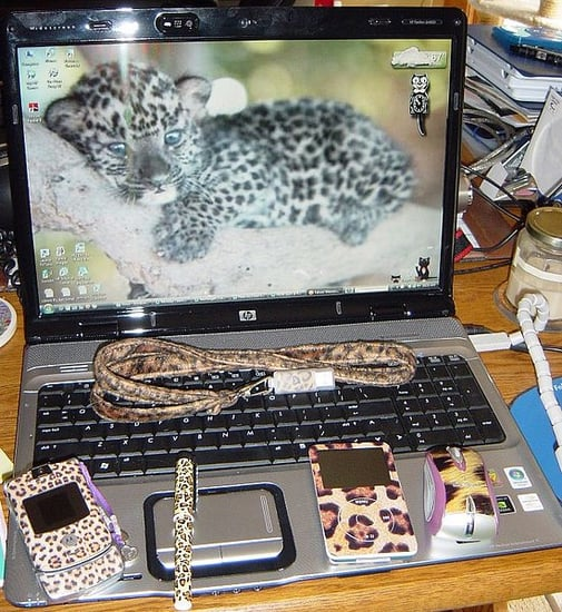 Leopardcc Shows Us Her Spotted Gadgets!
