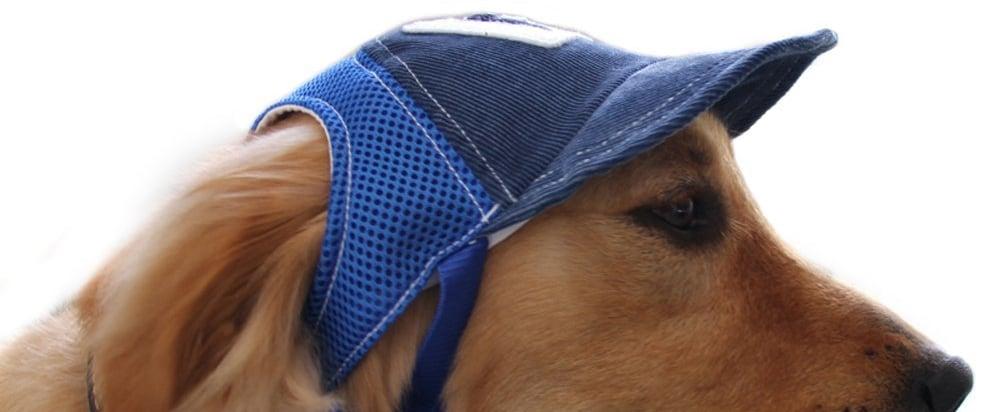 Dog Baseball Cap Sport Cap on Amazon