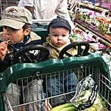 Riding in Grocery Carts