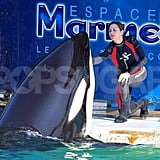 Marion Cotillard played with a whale at Marineland in Antibes, France.