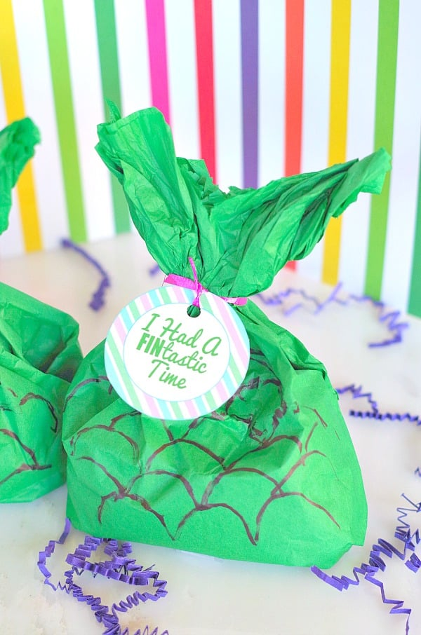 Homemade Birthday Party Favors For Kids