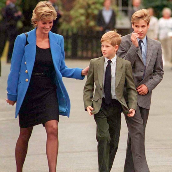 Prince William and Prince Harry Talking About Princess Diana