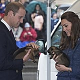 They held little adorable puppies at the Royal New Zealand Police College in April.