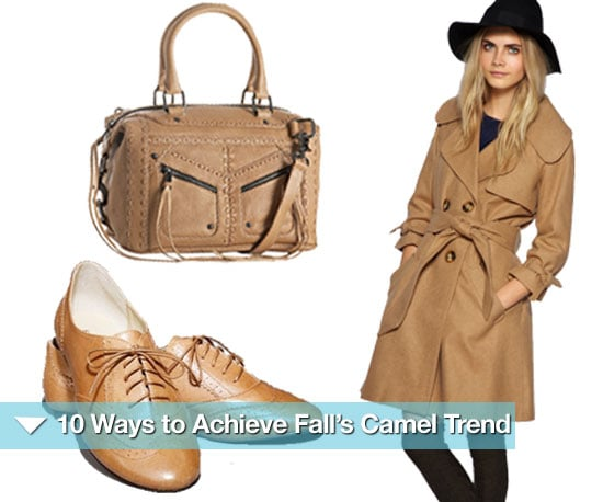 Shopping Fall's Camel Trend