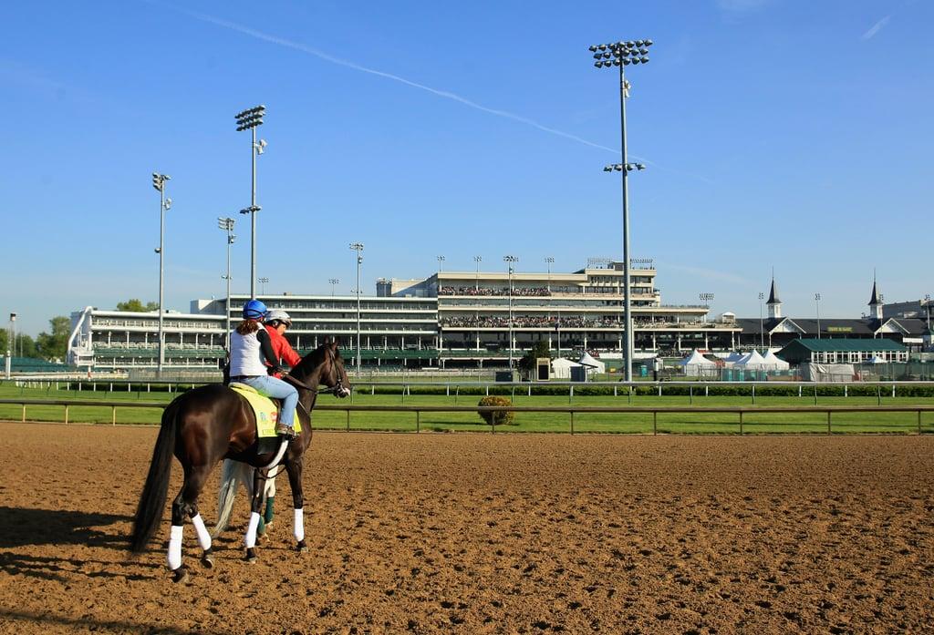 Kentucky Derby Horses 2015