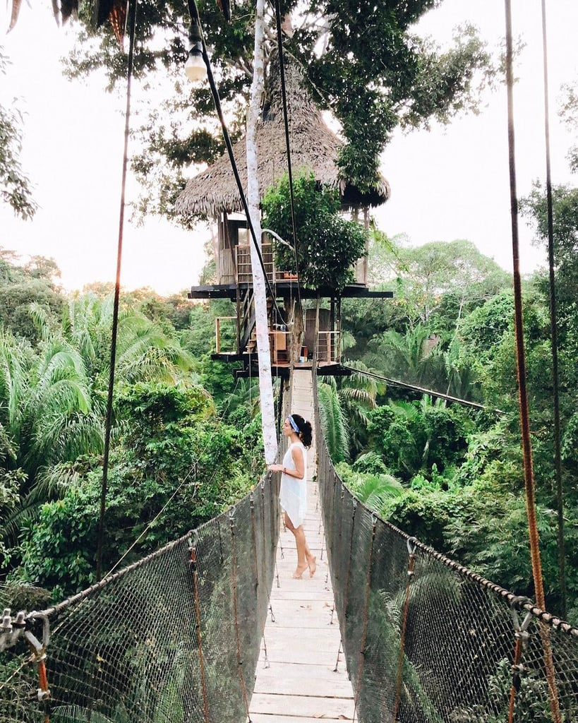 Best Treehouses Around the World