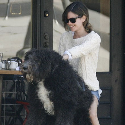 Pictures of Rachel Bilson With Huge Dog