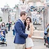 Disneyland Proposal