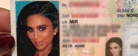 Is This the Most Glam License Photo of All Time?