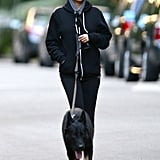 Nicole Richie took her new dog, Iro, for a walk in LA.