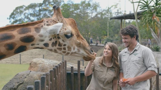 Bindi Irwin Adorably Promises to Teach Her 'Love' Chandler Powell 'Everything' About Zoo Life